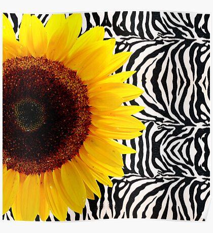 Bright Yellow Sunflower on Zebra Print Stripes Poster