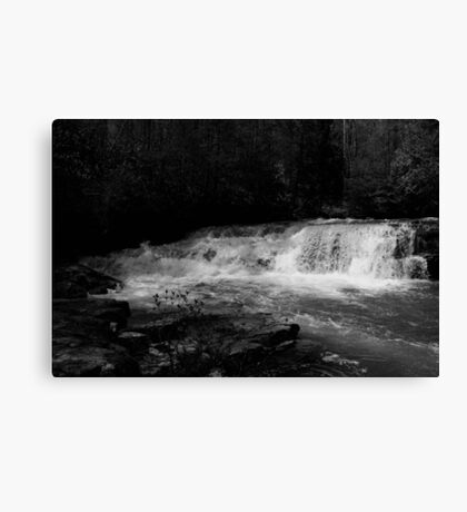 Dismal Falls in B&W  with video Canvas Print
