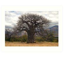 Baobab Art Print