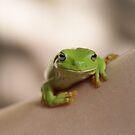 Frog on shoulder by Sharon Robertson