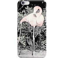 Yoga Flamingo iPhone Case/Skin