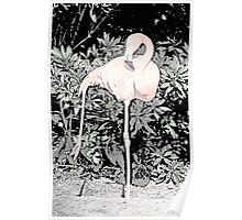 Yoga Flamingo Poster