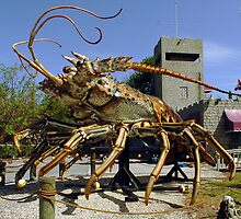 Lobster escapes restaurant by Larry  Grayam