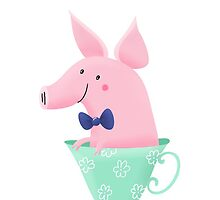 Teacup Pig by pigandpumpkin