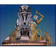 Cat Goddess Photographic Print