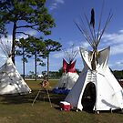 Pow Wow by Larry  Grayam