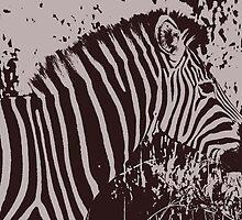 Safari - Graphic Zebra by rabeeker