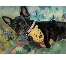 It's My Pooh Bear Photographic Print