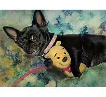 It's My Pooh Bear Photographic Print