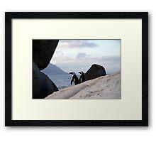 Safari - Penguin Love Framed Print