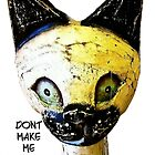 Don't Make Me Cat Slap You! by Darlene Lankford Honeycutt