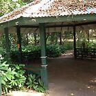 Love Queensland  by Jet12379