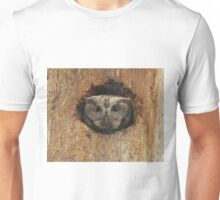 Hoot in a hole Unisex T-Shirt