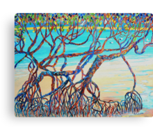 Town of 1770 Mangroves Canvas Print