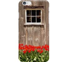 Red Tulips & Barn iPhone Case/Skin