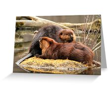 Beaverly love Greeting Card