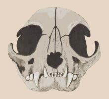 Catskull. by albutross