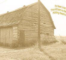 Old Country Barn by Carol Megivern