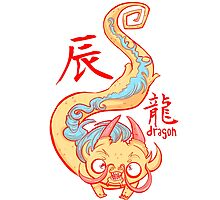 The Year of the Dragon by Indigo East