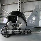 Pilot's Helmet on Plane Wing by LNara
