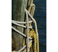 Rope on piling Photographic Print