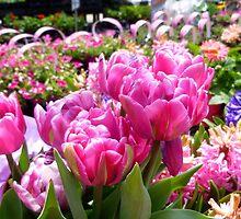 At The Garden Center by WildestArt