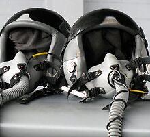 Pilot, Co-Pilot by LNara