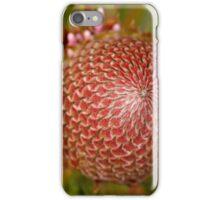 Mesmerised iPhone Case/Skin