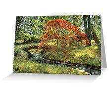 Spring - Japanese Maple Greeting Card