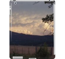 Medicine for mother earth iPad Case/Skin