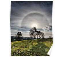 Trees with Ice Circle Poster