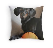 Wanna Play Ball? Throw Pillow