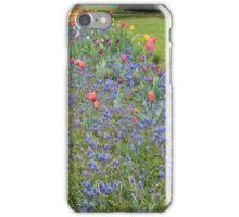 Roadside Garden iPhone Case/Skin