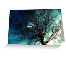 Midnight Tree Greeting Card