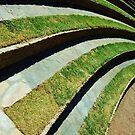 steps by leenybean