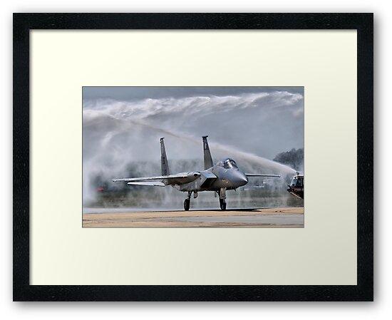 The Last Flight by Andreas Mueller