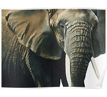 """Elephant"" Wildlife Animal Watercolor Poster"