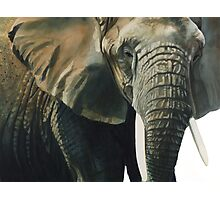 """Elephant"" Wildlife Animal Watercolor Photographic Print"