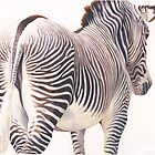 &quot;Wrong Way&quot; Zebra Wildlife Watercolor by Paul Jackson