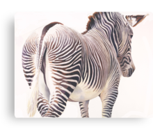 """Wrong Way"" Zebra Wildlife Watercolor Canvas Print"