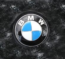 BMW Style by Greg Lester