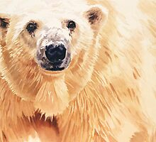 """Hope"" Polar Bear Wildlife Watercolor Art by Paul Jackson"