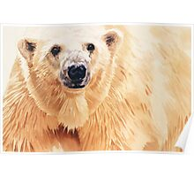 """Hope"" Polar Bear Wildlife Watercolor Art Poster"