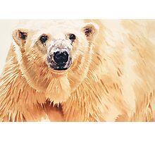 """Hope"" Polar Bear Wildlife Watercolor Art Photographic Print"