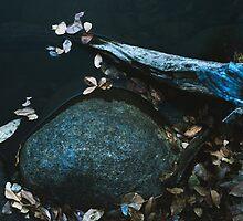 Leaves by LeighTurner