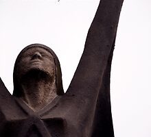 La Pasionaria - The Passion Flower by simpsonvisuals