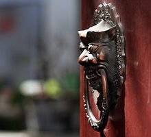 Door knocker by bfokke