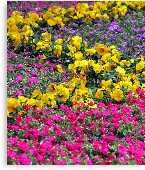 Endless flowers by bfokke