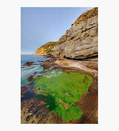 Green Africa Photographic Print