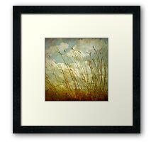 Spring Afternoon Framed Print